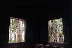 Eden of Earth Realm (Sheikh Shahriar Ahmed) Tags: bangladesh dhakadivision jamalpur melandaha rural village home windows light morning soft breeze green heavenly travelphotography travel originalphotographers sheikhshahriarahmed film fujicolorc200 fujifilm analog nikon nikonf80 n80 nikon2880mmf3345 pacificimage primefilm3650pro3
