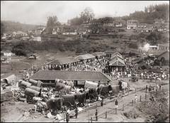 Market Day (ookami_dou) Tags: vintage india market oxcarts