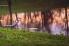Great Blue Heron (sniggie) Tags: ardeaherodias ardeidaefamily kentucky mercercounty shakervillageofpleasanthill pond shakervillage sunset