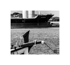 PROAS (K_BAU) Tags: barcos ships sea bw puerto harbour llaud
