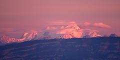 Mount Pink (iegienie) Tags: pink montblanc
