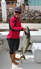 We got to go fishing this year on Fin's Up and we caught this 20 pound yellowtail.  I take zero credit as I was seasick.
