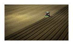 Precision (Sandra Draper) Tags: tractor d7100 farming field furrow