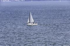 5310 (eacampos) Tags: sx60 mar barcos
