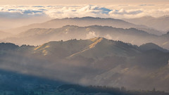 White Hill in Sunlight (Matt McLean) Tags: bayarea california clouds fog hills lake marin sunrays sunlight sunset tamalpais