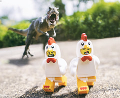 Chicken Dinner Chase (Jezbags) Tags: chicken dinner chase dinosaur trex lego legos toy toys macro macrophotography macrodreams macrolego canon canon80d 80d closeup upclose laowa scared fear run