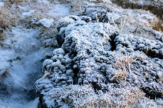 White frost on lava rocks