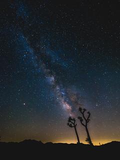 Milky Way at Joshua Tree National Park