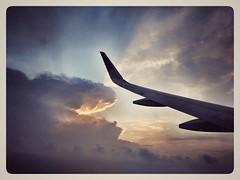 #pixel #flight #don'teatus #snake #snapseed #vintagepostcardfilter (vishnuk15) Tags: flight snapseed don vintagepostcardfilter snake pixel