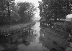 Bradshaw's Mill misty morning (Tony McLean) Tags: ©2018tonymclean eastyorkshire chalkstream blackwhite monochrome leicamonochrom leica21mmf34superelmar landscape