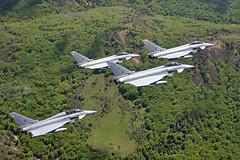 Ensayos Día de las Fuerzas Armadas (Ejército del Aire Ministerio de Defensa España) Tags: caza jet fighter logroño nubes paisaje verde vuelo flight eurofighter ala14 flying formation