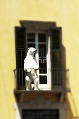 un orso polare@verona (me, paolo and the seven wonders + two&little3) Tags: balcone statua