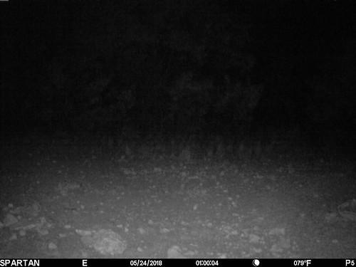 2018-05-24 01:00:04 - Crystal Creek 3