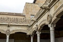 Casa de las Conchas de Salamanca, patio interior (ipomar47) Tags: casadelasconchas casaconchas concha conchas salamanca españa spain arquitectura architecture palacio palace gotico gothic plateresco plateresque gargola gargoyle