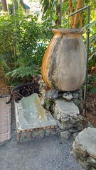 2018-04-26_09-02-00 (Kaemattson) Tags: theernesthemingwayhomeandmuseum hemingway house key west florida keys tropical garden