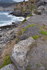 Brachiopods and other Permian Era fossils (i-lenticularis) Tags: bicheno fa31f18ltd mariaisland permianera tasmania fossil fossilcliffs limestone mudstone siltstone