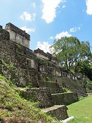 FLORES, GUATEMALA - Tikal ruins/ ФЛОРЕС, ГВАТЕМАЛА - руины Тикаль (El Ruso AG) Tags: гватемала гватемальский guatemala guatemalan guatemalteco centralamerican centralamerica centroamerica центральнаяамерика центральноамериканский тикал тикаль руины майя maya mayan tikal tical peten ruinas ruins