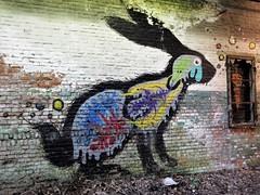ROA, Oli-B / Malmar - 5 mei 2018 (Ferdinand 'Ferre' Feys) Tags: gent ghent gand belgium belgique belgië streetart artdelarue graffitiart graffiti graff urbanart urbanarte arteurbano ferdinandfeys roa