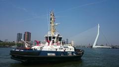 DSC_0080 (EEZ71) Tags: tug damen port rotterdam remorquage boer iskes widtug2915 water injection dredging cayenne