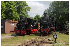 Pollo - 2018-02 (olherfoto) Tags: bahn eisenbahn schmalspurbahn museumsbahn pollo dampf dampflok dampfzug vasut kisvasut rail railway railroad narrowgauge steam train steamtrain