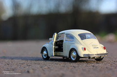 Road (enigma02211) Tags: collection modelcar
