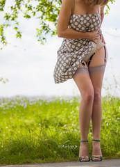 wind (normamisslegs) Tags: legs misslegs nylon stockings stocking basnylon rht vintage grey gris charme glamour frenchgirl fashion dots heels sandales woman dress sexy elegant lady spring flowers suspenders suspenderbelt garter jarretelles