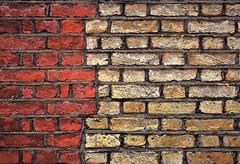 IMG_9651 (olivieri_paolo) Tags: supershots walls bricks abstract