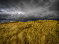Storm Clouds over the Sand Dunes at Aberffraw. (hemlockwood1) Tags: storm dramaticdark clouds sky black sun foreboding atmosphere anglesey wales weather dunes cloudsdunes sand