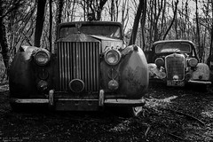 Mine is bigger than yours (Dennis van Dijk) Tags: urbex ue eu europe germany urban exploration car cars classic bw blackandwhite black white vintage retro forest precious beauty moody rust lost found decay derelict abandoned rotten left behind american rollsroyce mercedes benz oldtimer