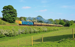 55019. (curly42) Tags: 55019 class55 deltic napier englishelectric railway svr preserveddieselloco svrdieselgala2018 eardington severnvalleyrailway