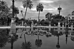Reflejos (ameliapardo) Tags: reflejos agua arboles cielo parque jardines airelibre sevilla parquedemarialuisa fujixt1 fuji1855