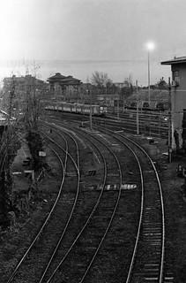 Pavia, 2014