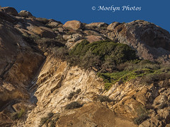 Looking Up at Morro Rock 0001 (moelynphotos) Tags: morrorock rockformation rock volcanic nature outdoors clearsky nopeople beautyinnature california lowangle moelynphotos