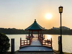Ohori Park at Sunset (josefrancisco.salgado) Tags: apple fukuoka japan ohoripark atardecer charca estanque iphone iphone8plus ocaso pond puestadelsol sunset