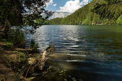 Piburger See - Tirol (Ernst_P.) Tags: aut oetz piburgersee tirol lake lago tyrol austria autriche paisaje landscape sony zeiss distagon 24mm f20 österreich ötz ötztal wald bosque forest wasser water agua aqua