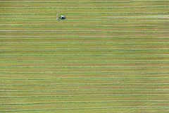 Dry Grass (Aerial Photography) Tags: by nm opf 05052014 5d374614 ackerbau bavaria bayern deutschland farbe feld feldarbeit fotoklausleidorfwwwleidorfde fotoklausleidorfwwwleidorfaerialcom germany grafik gras grün haberslehla habersmühle heu heuwenden land landscapeandnature landschaft landschaftnatur landwirtschaft luftaufnahme luftbild muster neumarktidopf region reihen traktor aerial agriculture color colour field fieldwork graphicart graphics grass green hay landscape landscapenature nature outdoor pattern patterns rows tractor verde neumakrtidopf bayernbavaria deutschlandgermany deu