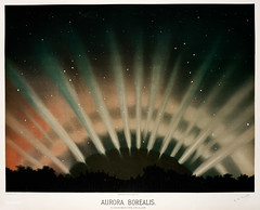 """AuroraBorealisfrom the Trouvelot<br />astronomical drawings (1881-1882) by <a href=""""https://www.rawpixel.com/search/etienne%20leopold%20trouvelot?&page=1"""">E. L. Trouvelot</a> (1827-1895) (Free Public Domain Illustrations by rawpixel) Tags: antique astronomical astronomy aurora auroraborealis borealis celestial drawing etienne etienneleopoldtrouvelot galaxy handdrawn leopold lithography nature northernlight old planet polarlight science solarsystem space stars trouvelot trouvelotastronomicaldrawings universe vintage"""