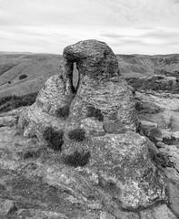 Tor (l4ts) Tags: landscape derbyshire peakdistrict darkpeak kinderscout nethertor gritstone gritstoneedge gritstonetor heather moorland grindsbrook edale blackwhite monochrome