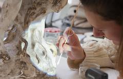 Atelier Sculptures (2018) (Institut national du patrimoine) Tags: sculptures gelaqueu geldagaragar nettoyage plâtre