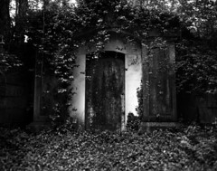 Vines and Crypt (Nickademus42 (Thank you for 1 million views)) Tags: lexington cemetery ky kentucky graflex speed graphic 4x5 sheet film aristra 100 kodak ektar 127mm ivy vine crypt graveyard