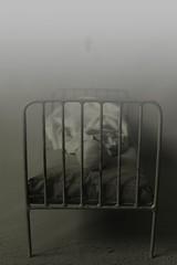 11 (dolls of milena) Tags: bjd abjd resin doll echo town ygritte hospital vintage retro portrait