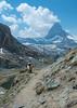Swiss Sheep near Matterhorn (Jon Ariel) Tags: sheep matterhorn zermatt switzerland europe alps alpen mountains mountain