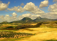 Landscape near Ronda, view from train (majka44) Tags: spanielsko landscape spain ronda travel light sky clouds field green grass mountain hill olive trees