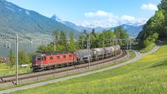 RE 6/6 11615 - 620 015 met een aantal ketelwagens. (twenterail) Tags: sbb re44 trein spoorwegen eisenbahn zug train railroad schweiz zwitserland