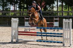 A9905959_s (AndiP66) Tags: vereinsspringen springen sursee 2018 29april2018 april pferd horse schweiz switzerland kantonluzern cantonlucerne concours wettbewerb horsejumping equestrian sports springreiten pferdespringen pferdesport sport sony alpha sonyalpha 99markii 99ii 99m2 a99ii ilca99m2 slta99ii sony70400mm f456 sony70400mmf456gssmii sal70400g2 amount andreaspeters