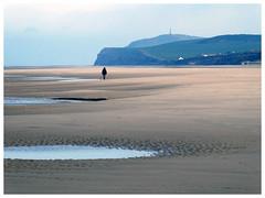 Blanc nez. (abac077) Tags: blancnez cap cape winter hiver plage beach sea mer pasdecalais 62 france paysage