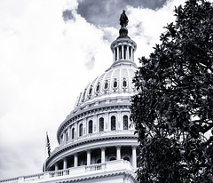 Detail--US Capitol (PAJ880) Tags: washington dc mono bw architecture congress government us capitol