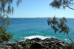 Terra Australis (Gillian Everett) Tags: pacific ocean noosa national park queensland australia 52 2018 week20 continent island land southern 21 118