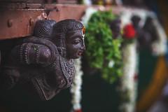 திருவல்லிக்கேணி திருத்தேர் (Logesh Photostream) Tags: triplicanecar india tamilnadu chennai fedtival culture triplicane chennaiweekendclickers cwc