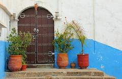Rabat (hans pohl) Tags: maroc rabat portes doors architecture stairways escaliers plantes plants